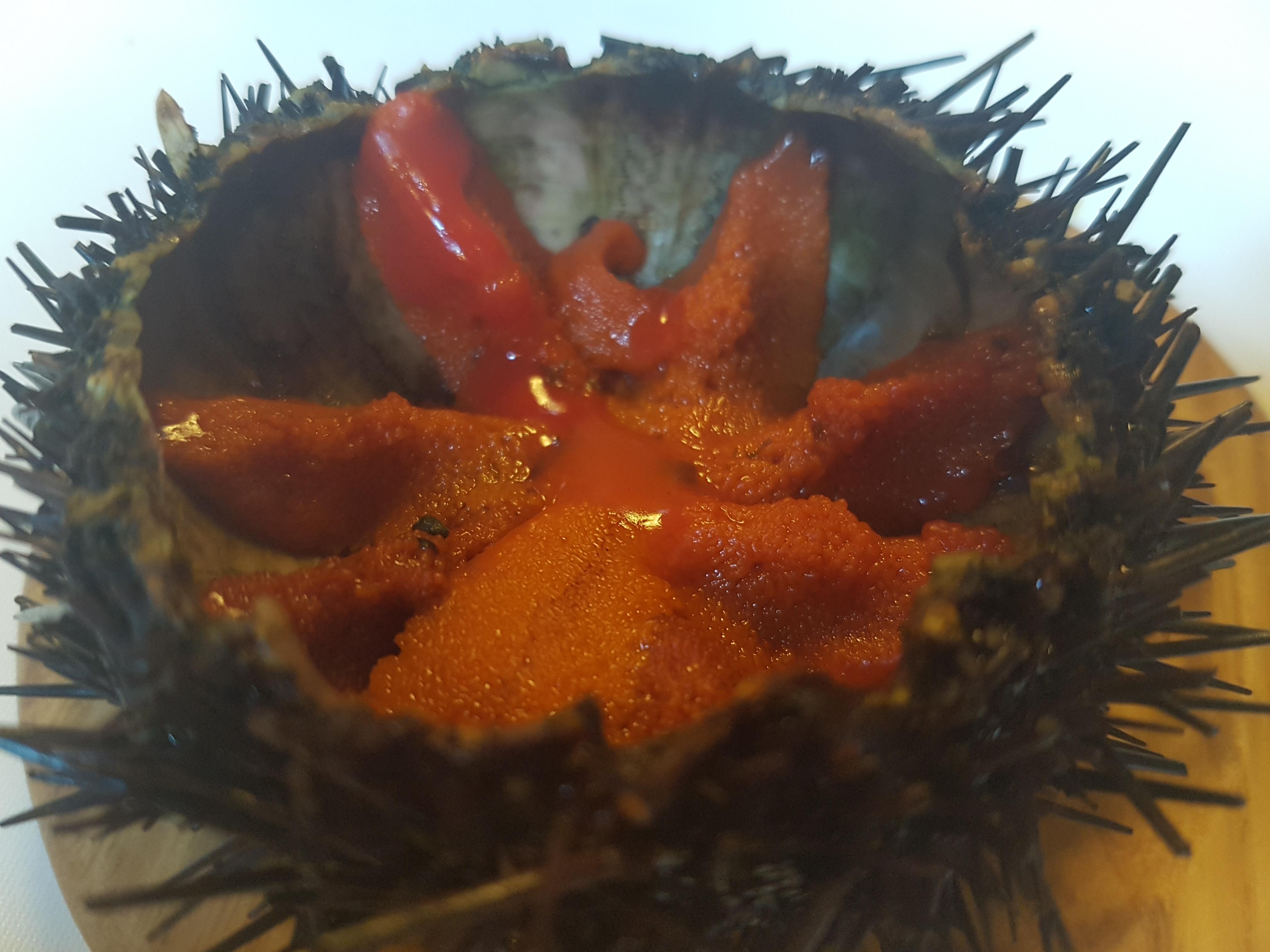 Oricio de Mar crudo, el sabor más puro del Cantábrico