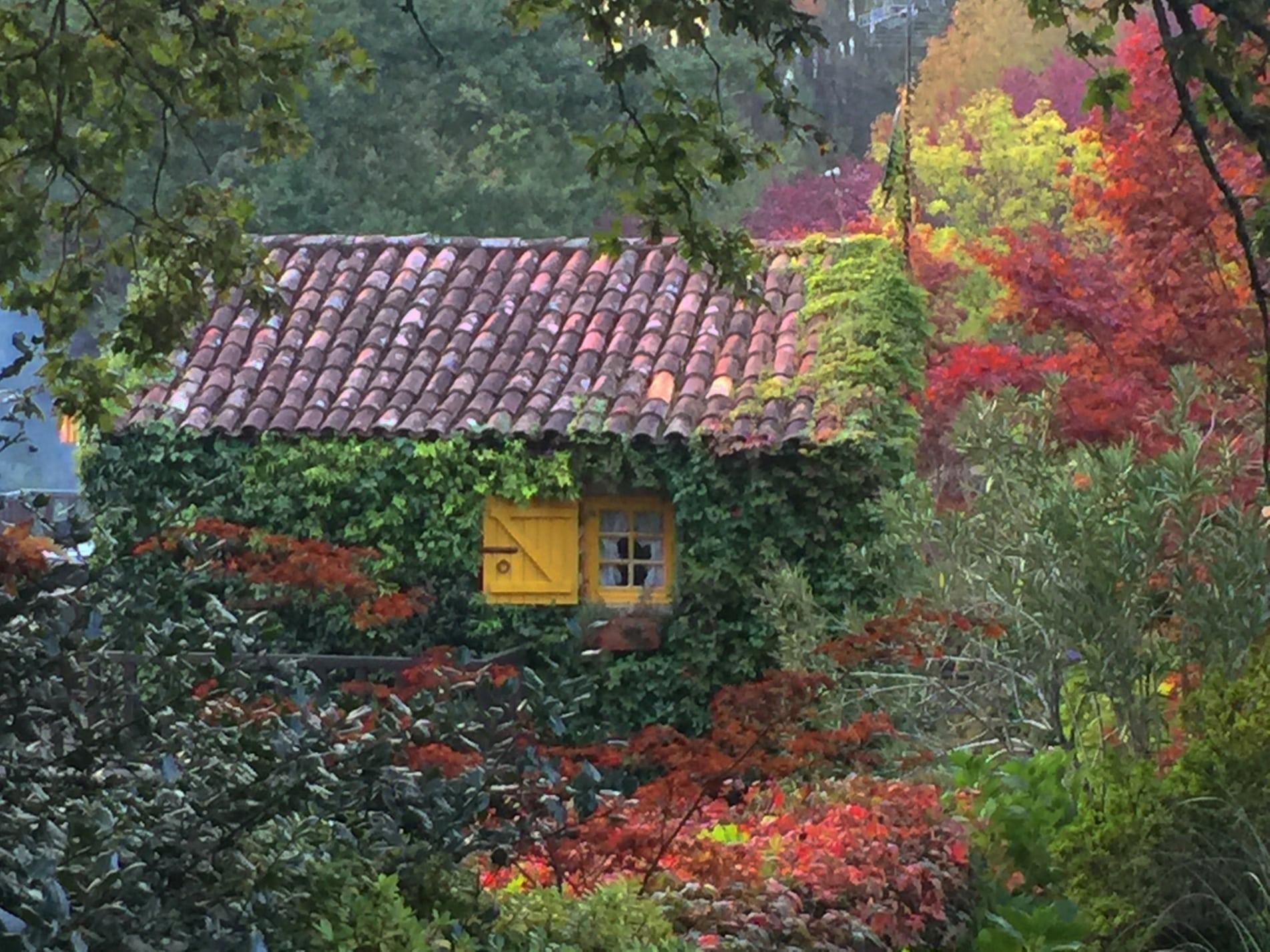 casa en paisaje